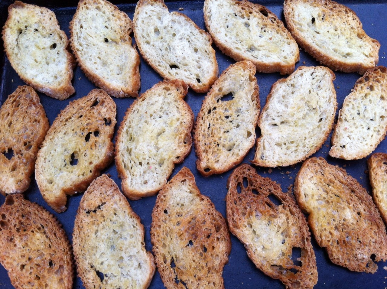 toasted-toasts